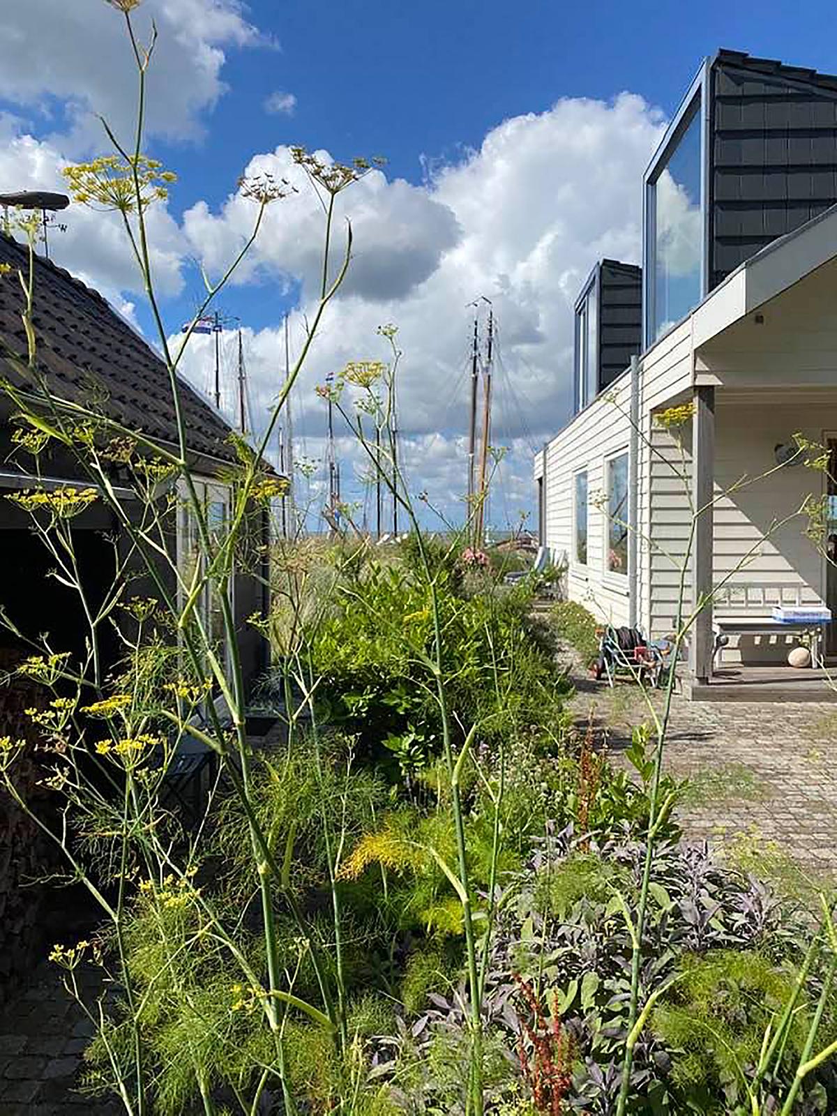 LDS Ra Vlieland foto1