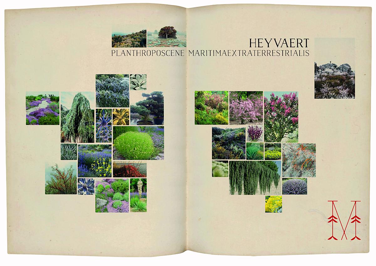 Planthroposcene